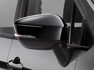 Black Door Mirror